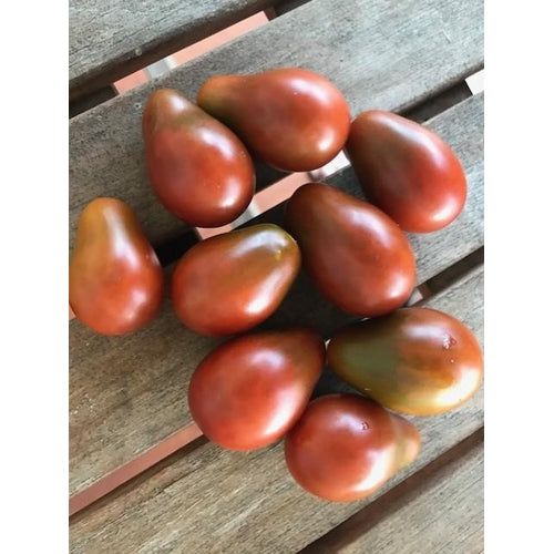 TOMATO 'Mini Chocolate Pear'