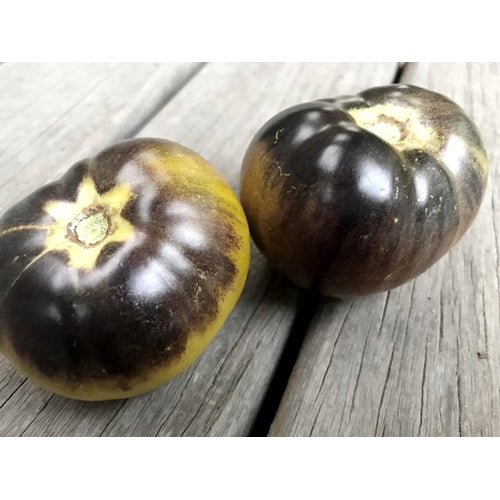 TOMATO 'Green and Black'