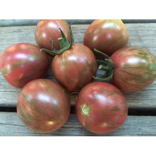 TOMATO 'Purple Bumblebee' seeds