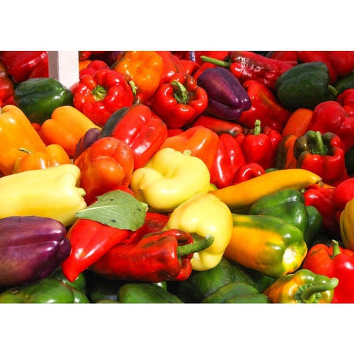 CAPSICUM 'Heirloom Mix' - Boondie Seeds