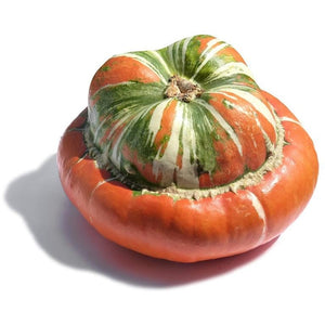 PUMPKIN 'Turkish Turban' / SQUASH - Boondie Seeds