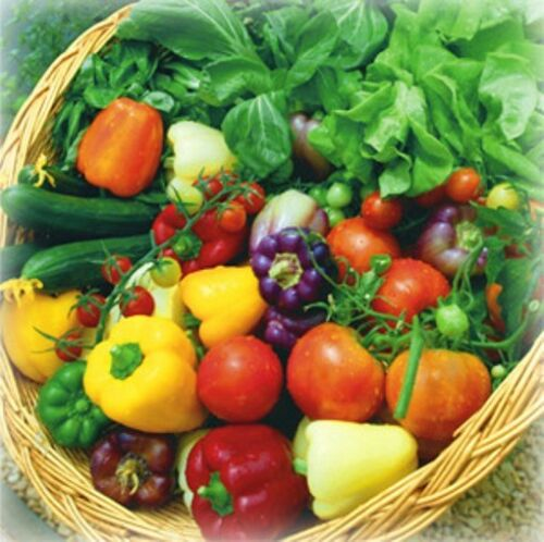 SPRING AND SUMMER VEGETABLE PACK - 25 pkts of seeds