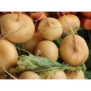 TURNIP 'Goldball' - Boondie Seeds