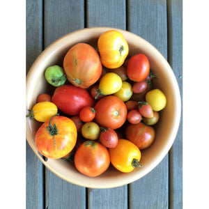 TOMATO 'Rare Heirloom Mix' - Boondie Seeds