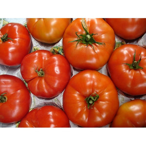 TOMATO 'Brandywine Red' - Boondie Seeds