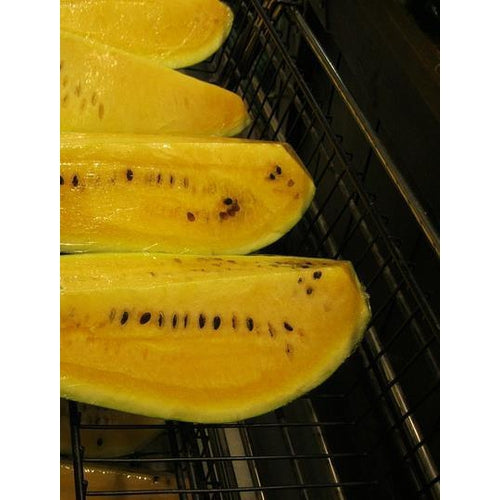 WATERMELON 'Orangeglo' seeds