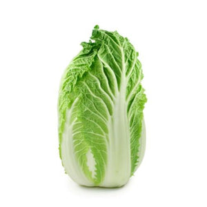 CHINESE CABBAGE  / WONG BOK / WOMBOK 'Mini Head F1' - Boondie Seeds