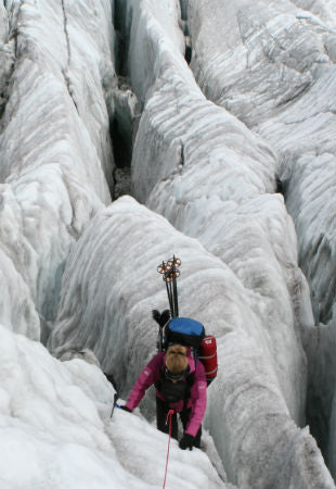 Katie climbing the ice caps in Patagonia