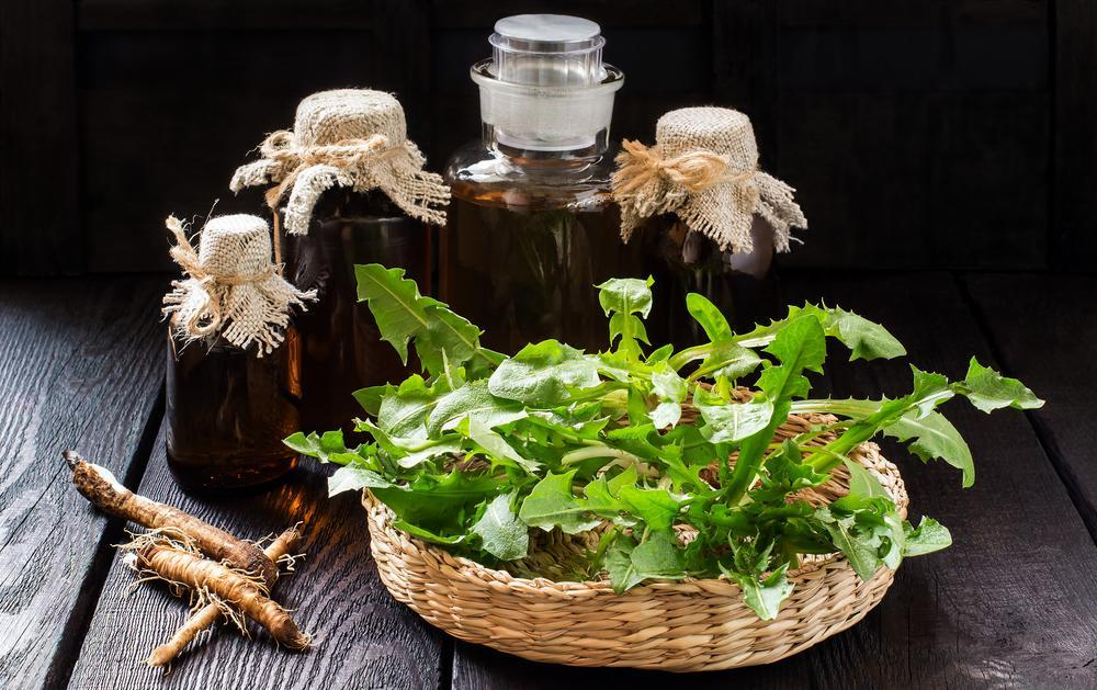 Dandelion root extract kills cancer, research suggests