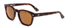 Otis Summer of 67 Matte Dark Tort/Brown - Board Store Otis EyewearSunglasses