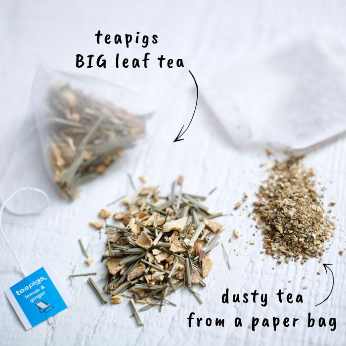 Teapigs Lemon Ginger Herbal Tea (15 tea temples)