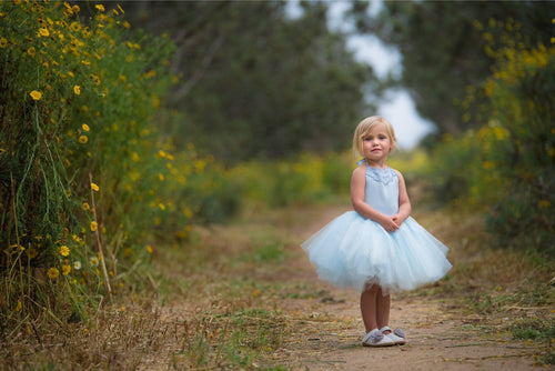 Cinderella Inspired Light Blue Tutu dress! Inspired by Cinderella herself.