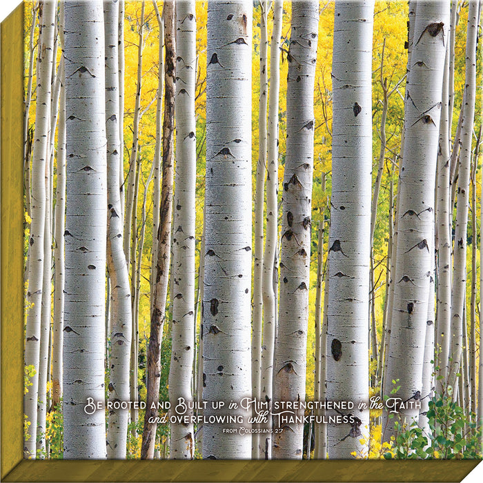 Be Rooted Birch Canvas - Carpentree
