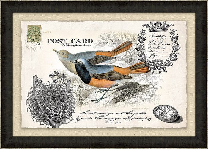 He Will Cover You Bird Vintage Post Card Framed Art