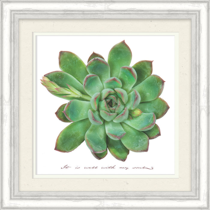 It is Well with My Soul Succulent Framed Art