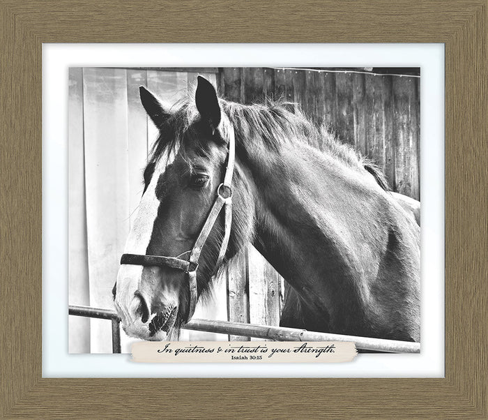 In Quietness and In Trust Farm Line Framed Art