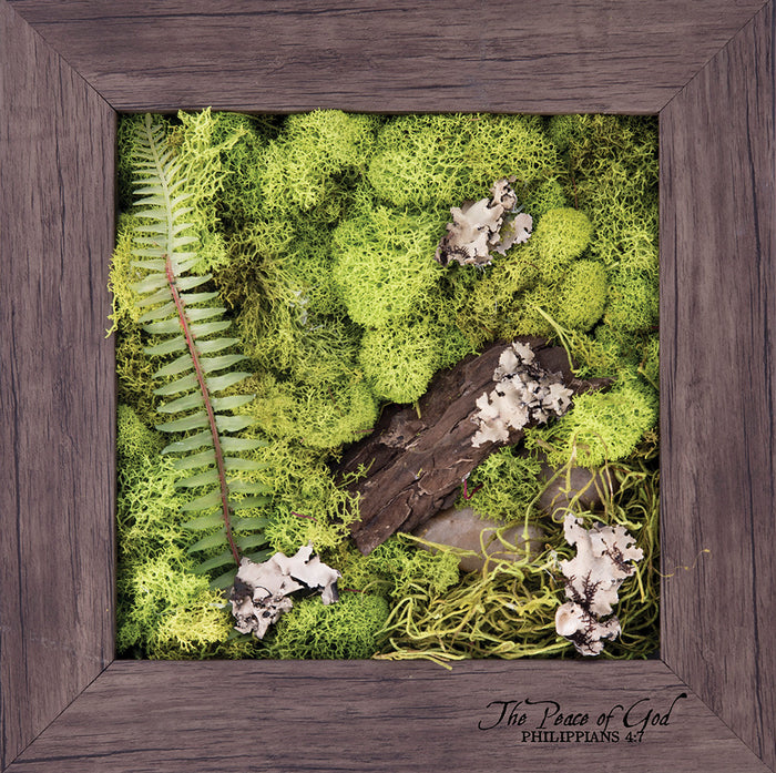 Peace - Biophilic Framed Art