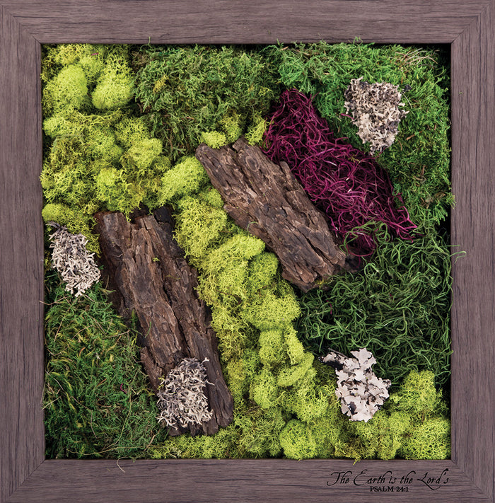 The Earth Is The Lord's - Biophilic Framed Art