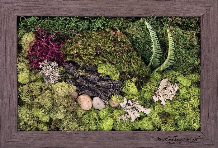 Be Still - Biophilic Framed Art