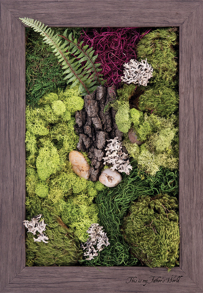 My Father's World - Biophilic Framed Art