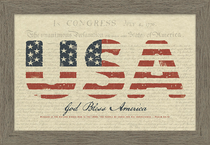 USA God Bless America Framed Art (46555)