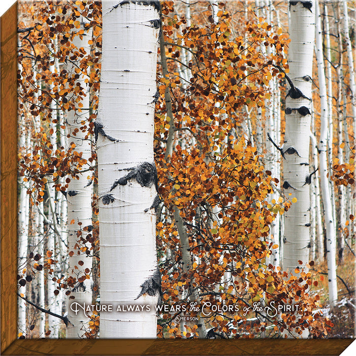 Colors of the Spirit Birch Canvas