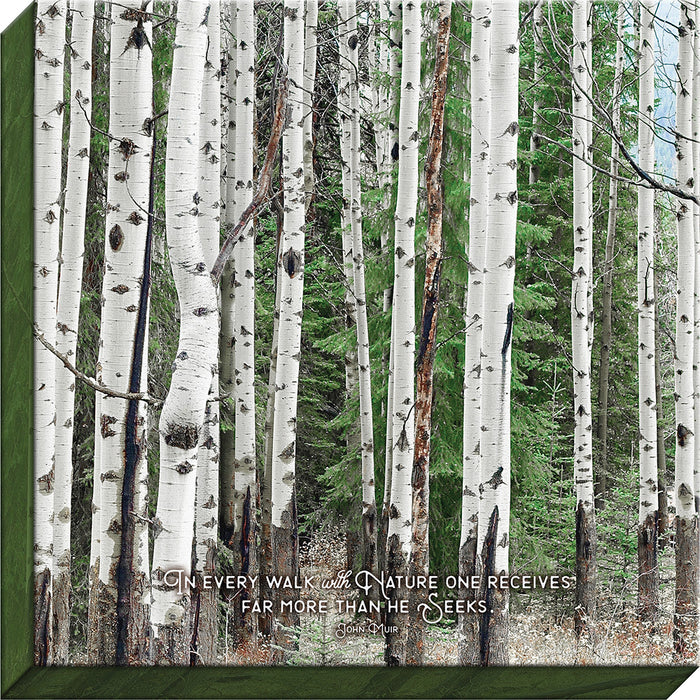 In Every Walk with Nature Birch Canvas
