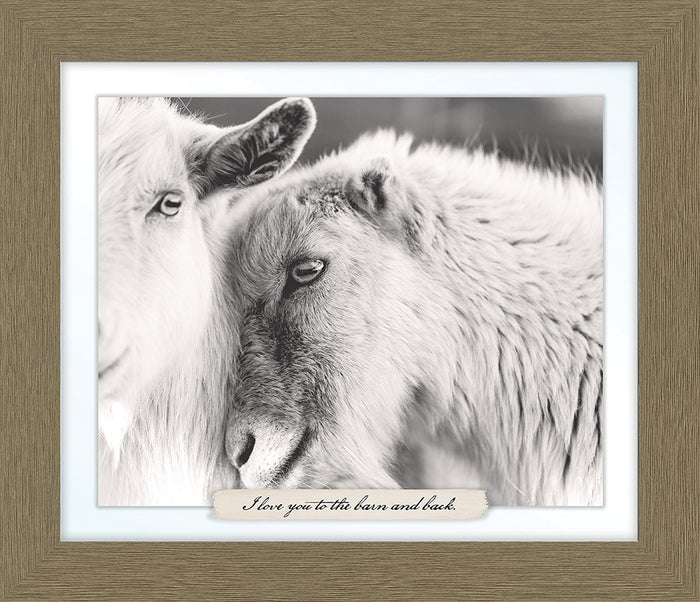 Goat Farm Line Framed Art