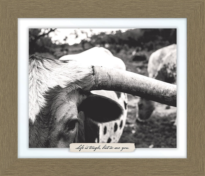 Longhorn Farm Line Framed Art