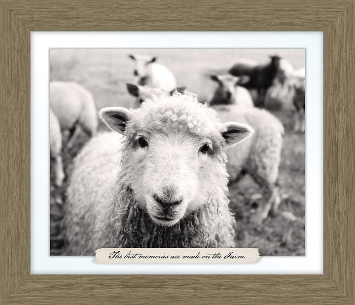Sheep Farm Line Framed Art