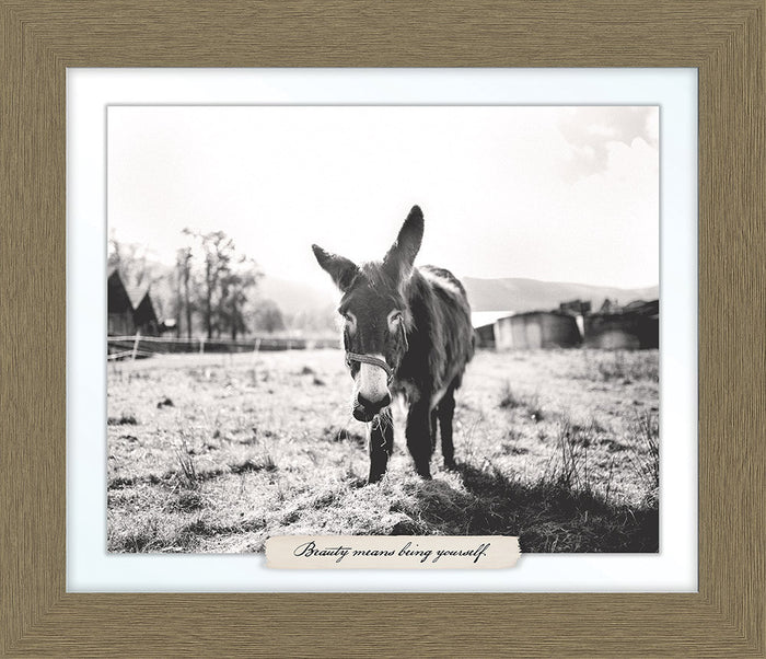 Donkey Farm Line Framed Art