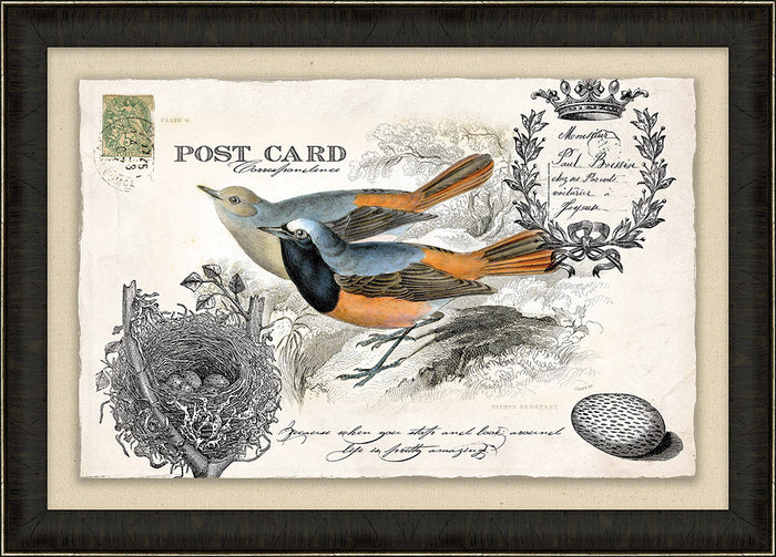 Bird Vintage Post Card Framed Art