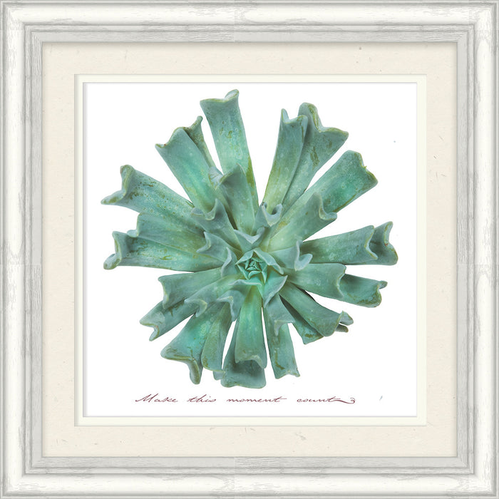 Make This Moment Succulent Framed Art