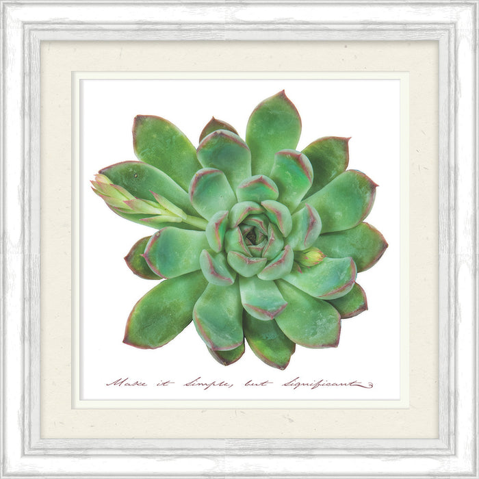 Make It Simple Succulent Framed Art
