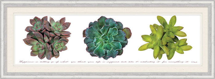 Happiness Is Letting Go Succulent Framed Art