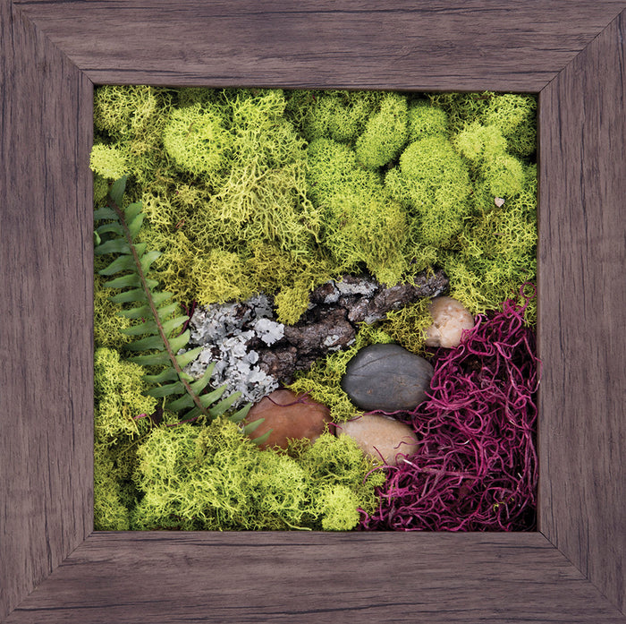 Touch of Nature - Biophilic Framed Art