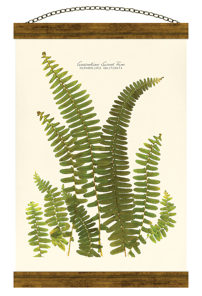 Australian Sword Fern Hanging Banner Wall Art - Carpentree