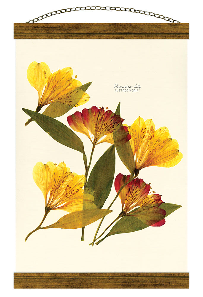 Alstroemeria Hanging Banner Wall Art - Carpentree