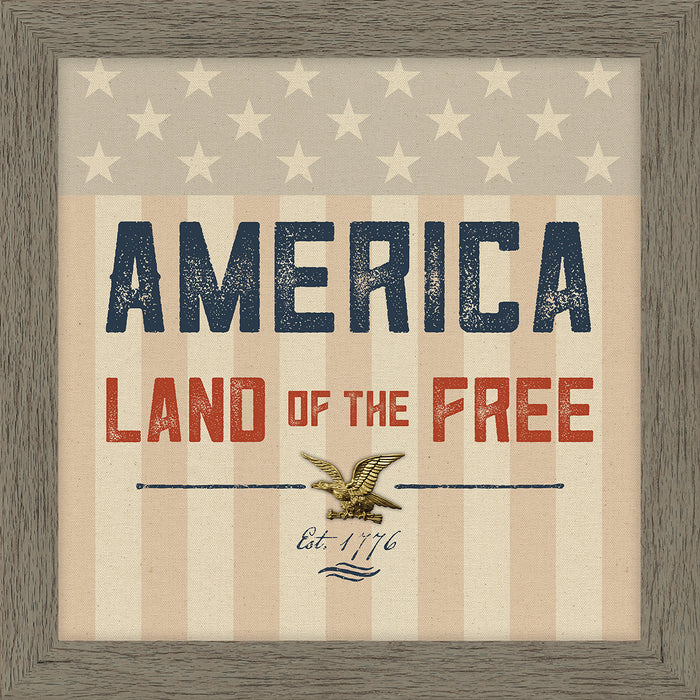 Land Of The Free Framed Art (50081)