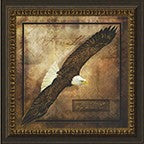 Wings Like Eagles Framed Art
