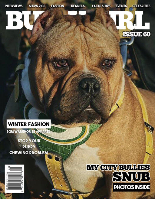 Bully Girl Magazine<br>Issue 60 - BGM Warehouse