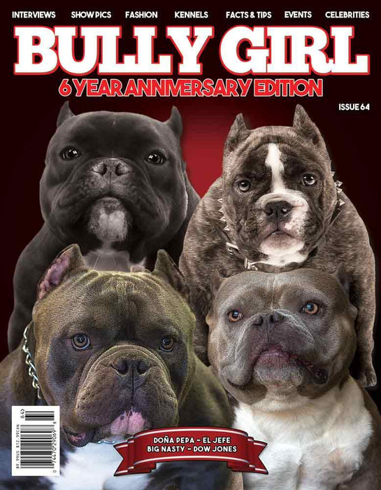 Bully Girl Magazine 6 Year Anniversary Issue