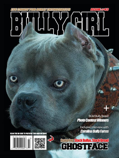 Bully Girl - Digital Issue 43 - BGM Warehouse - The Best Bully Breed Magazines, Clothing and Accessories