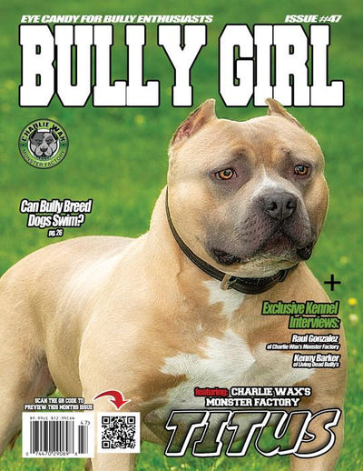 Bully Girl - Digital Issue 47 - BGM Warehouse - The Best Bully Breed Magazines, Clothing and Accessories