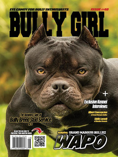 Bully Girl - Digital Issue 48 - BGM Warehouse - The Best Bully Breed Magazines, Clothing and Accessories