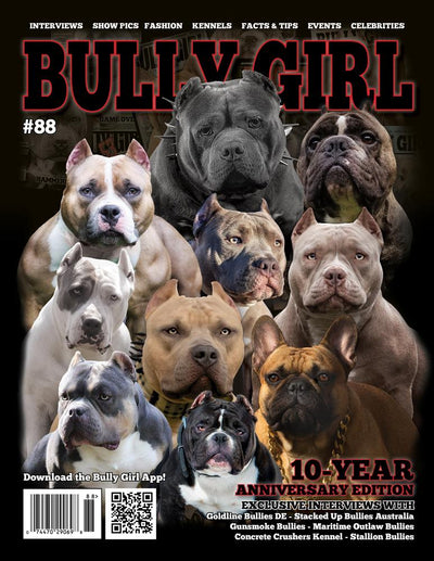 Bully Girl Magazine Issue 88 (10-Year Anniversary Edition) - PRE-ORDER - BGM Warehouse - The Best Bully Breed Magazines, Clothing and Accessories