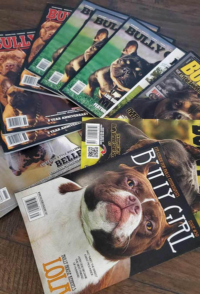 BGM Back Issues (Used Condition) - BGM Warehouse - The Best Bully Breed Magazines, Clothing and Accessories