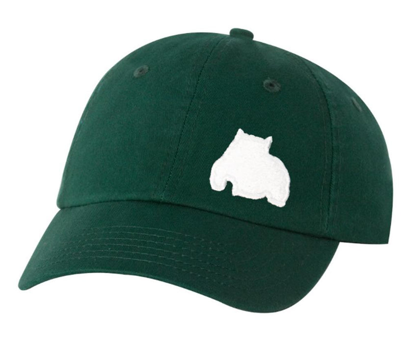 BGM Bully Dad Cap Forest Green