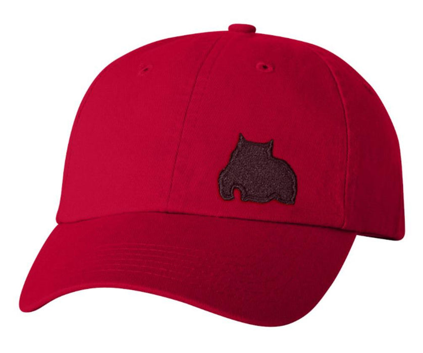 BGM Bully Dad Cap Red