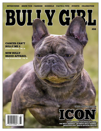 Bully Girl - Digital Issue 84 - BGM Warehouse - The Best Bully Breed Magazines, Clothing and Accessories